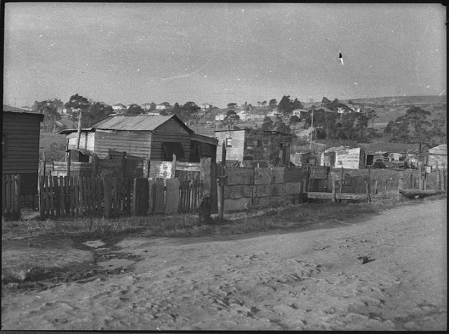 """Humpies"" in Platts Estate, Waratah, Newcastle 1953. SLNSW"