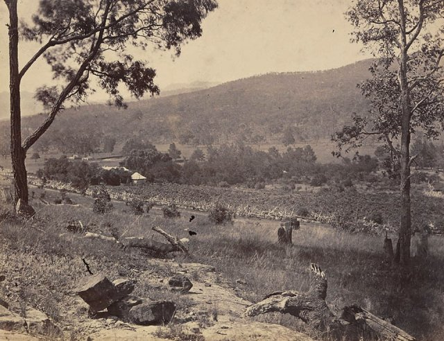 "Aboriginal lands in Upper Hunter: cleared and cultivated. ""Thornthwaite"" at Dartbrook c1860. SLNSW"