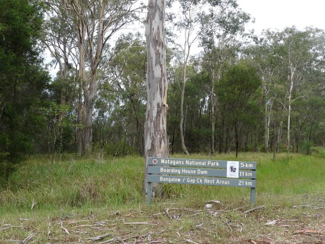 Watagans National Park near Wallis Creek 2013