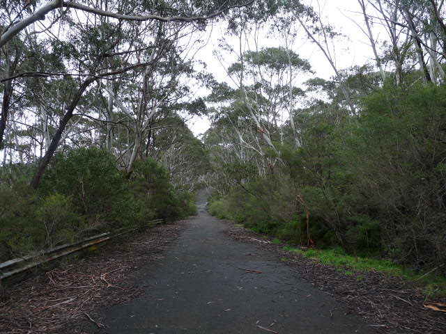 Race track at the Gully, Katoomba